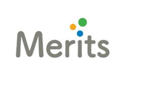logo_merits
